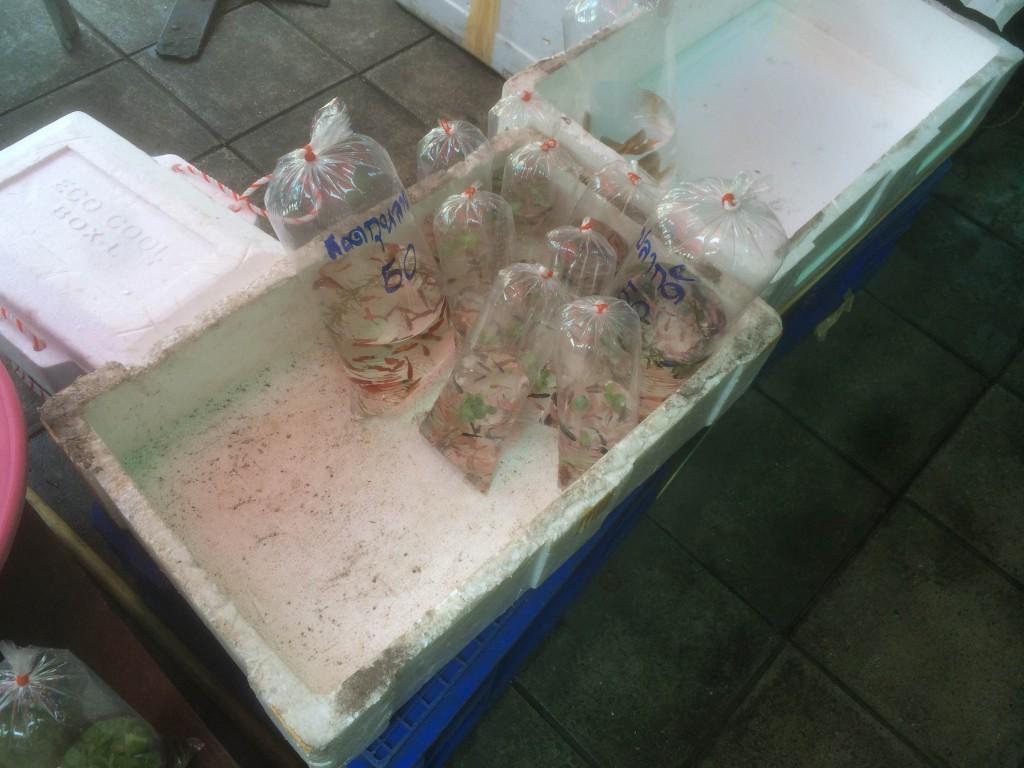 En bakken met zakken vissen